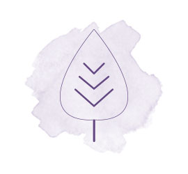 savon naturel, f'ânes de carottes, icône producteurs