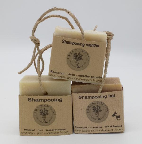 shampooing menthe, f'ânes de carottes